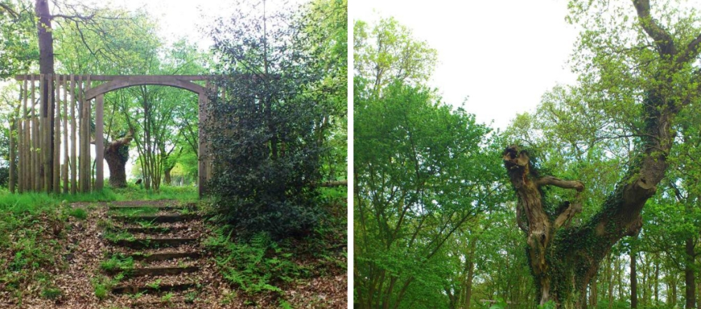 Links zien we de Bekhofschans, met toegevoegd hekwerk, zoals hij er vandaag de dag bij ligt. Daarnaast zien we de typische 'soldatenboom' die op de schans staat (Foto's: Wytse Vellinga)