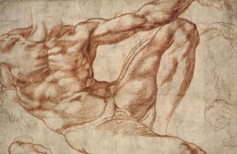 De schetsen van Michelangelo zijn kunstwerken op zich. Hierboven een studie van een mannelijk naakt dat model stond voor Adam op het plafond van de Sixtijnse kapel. (Foto: Wikimedia).