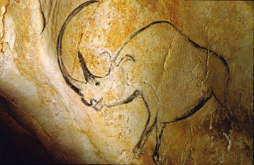 Één van de zeer realistische rotsschilderingen uit de grot van Chauvet. Kun je je voorstellen dat er 20.000 tot 30.000 jaar geleden neushoorns rondliepen in Frankrijk? (Foto: Wikimedia)