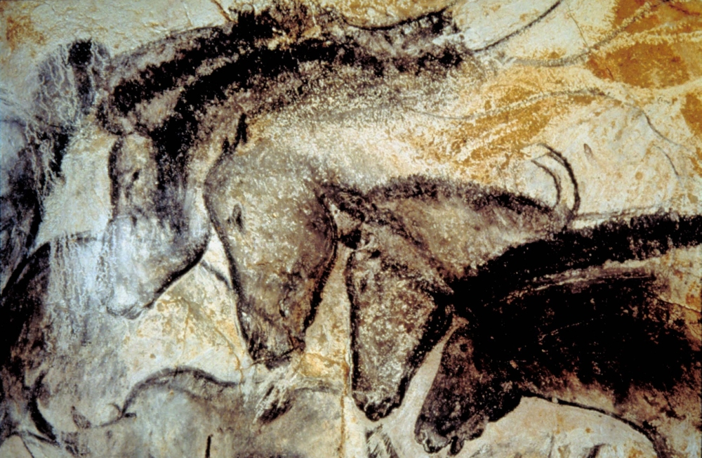Panel of horses: detail van één van de rotsschilderingen van Chauvet. (foto: Wikimedia)