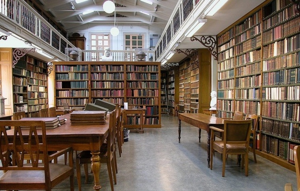 Bibliotheek Artis - bieb beneden