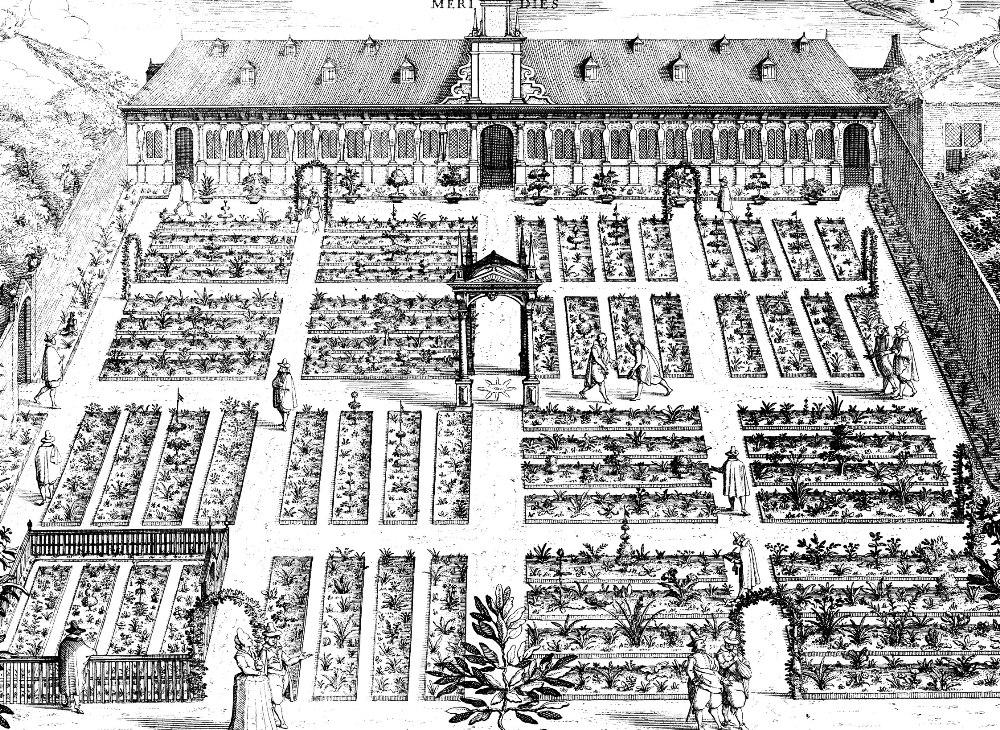 De Leidse Hortus in 1610.  Gravure door Willem Swanenburgh en Jan Cornelisz Woudanus.
