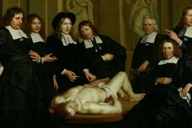 De anatomische les