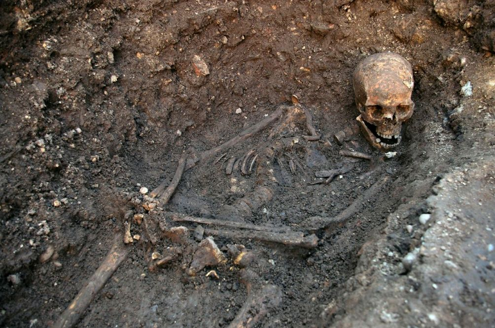 Lange tijd werd Richards graf verloren gewaand, maar in augustus 2012 startte er een onderzoek en opgraving op initiatief van de Richard III Society. Op deze foto is de scoliose in het skelet van Richard goed te zien (foto: Dan Kitwood/Getty Images via flickr.com).