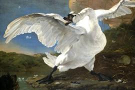 Hoe de kunst het Rijksmuseum vulde