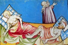 Quarantaine: Italiaanse builenpestpreventie