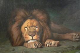 Waarom de leeuw het leeuwendeel krijgt