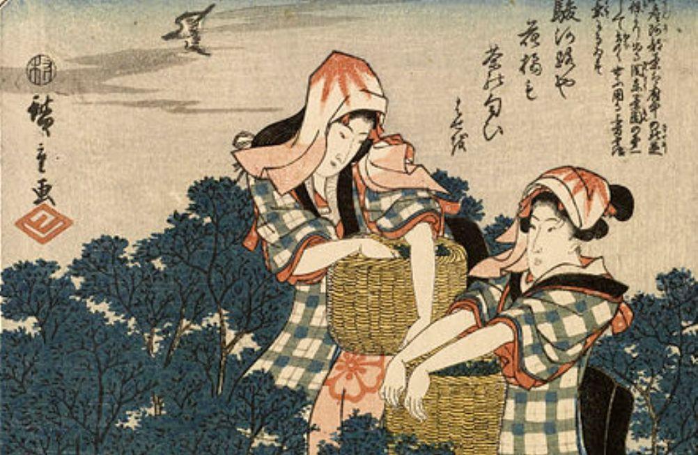 Foto: theepluksters, een houtsnede van Hiroshige (1797-1858)
