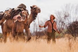 Film & TV update: van de Colorado tot de Nijl
